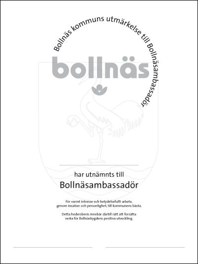 Diplom för Bollnäsambassadörer