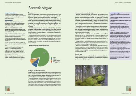 Sidan 34-35 i häftet
